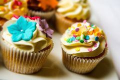 Cupcakes on a plate Stock Images