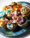 Cupcakes on a plate Royalty Free Stock Photo