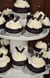 Cupcakes on platter. Chocolate cupcakes with Vanilla icing on platter with cookie sticks Stock Photography
