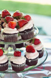Cupcakes on Platters Royalty Free Stock Image