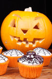 Cupcakes and pumpkin Royalty Free Stock Photography
