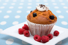 Cupcakes with raspberries Royalty Free Stock Photography