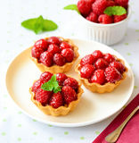 Cupcakes with raspberries Stock Image