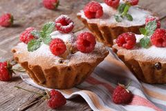 Cupcakes with raspberries and mint closeup horizontal Royalty Free Stock Photography