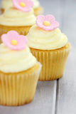 Cupcakes in a Row Royalty Free Stock Photography