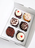 Cupcakes in special carrier box. A photograph showing 6 luxury gourmet cup cakes sitting pretty in a special cardboard take out carrying box made for half a Royalty Free Stock Photos