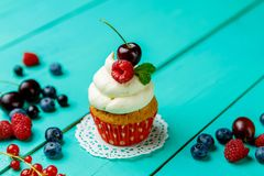 Cupcakes with summer berries Stock Images