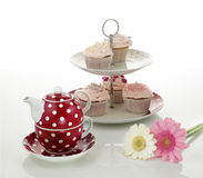 Cupcakes and tea. Pot with flowers on isolated white background Royalty Free Stock Photos