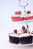 Cupcakes on the tray Royalty Free Stock Photography