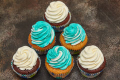 Cupcakes with turquoise and white buttercream frosting on brown background Stock Photography