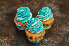 Cupcakes with turquoise and white buttercream frosting on brown background Royalty Free Stock Photos