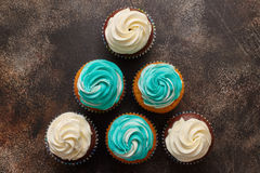 Cupcakes with turquoise and white buttercream frosting on brown background Royalty Free Stock Image