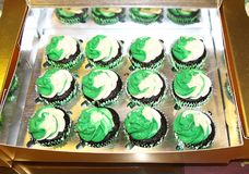 Cupcakes, twelve chocolate flavoured with green and white frosting. In a mirror style box royalty free stock image