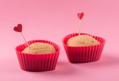 Cupcakes. Stock Images