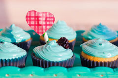 Cupcakes for Valentine`s Day. Card or an illustration for an article on Valentine`s Day Royalty Free Stock Image