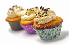 Cupcakes with vanilla whipped cream Royalty Free Stock Image
