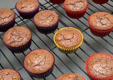 Cupcakes in vibrant paper wrappers cooling on wire rack Stock Photos