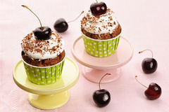 Cupcakes with whipped cream and cherry Royalty Free Stock Photos