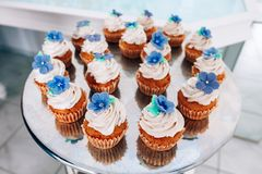 Cupcakes with whipped cream and frosting on a silver table in stainless steel Stock Photography