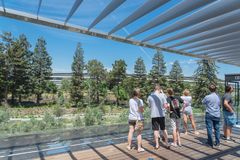 The Roof Terrace features a unique view of Apple Park and its rolling landscape stock photos