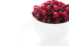 Cupful of cranberries Stock Images