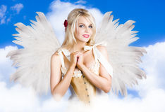 Free Cupid Angel Of Love Flying High With Fairy Wings Royalty Free Stock Photo - 29224025