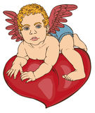 Cupid baby heart color Stock Photos