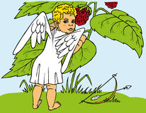 Cupid and berries Stock Image