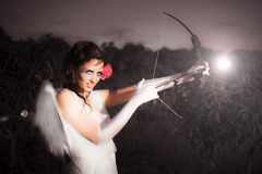 Cupid With Bow And Rose Arrow Stock Image