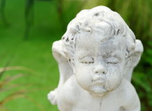 Cupid face sculpture stone Royalty Free Stock Images