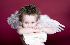Cupid Laughing. Boy with Wings posing with pedistal, beautiful blue eyes stock photos