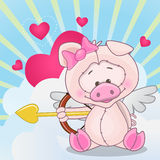 Cupid Pig Stock Image