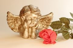 Cupid with rose Royalty Free Stock Photo