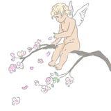 Cupido Stock Fotografie