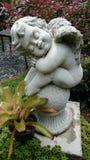 Cupido do sono Imagem de Stock Royalty Free