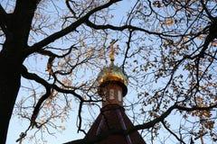 Cupola della chiesa sui precedenti degli alberi e del cielo fotografia stock