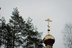 Cupola della chiesa sui precedenti del cielo Immagini Stock Libere da Diritti