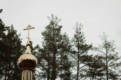 Cupola della chiesa sui precedenti del cielo Immagine Stock Libera da Diritti