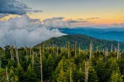 Cupola di Clingmans, Great Smoky Mountains, Tennessee Fotografie Stock Libere da Diritti