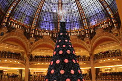 Cupola la fayette - Christmas Tree Stock Photo