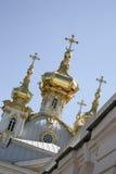 cupolas złoty pałac peterhof Obrazy Stock