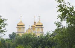 Cupole dorate immagine stock