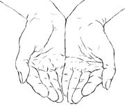 Cupped hands. Illustration of cupped woman's hands Royalty Free Stock Photography