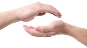 Free Cupped Hands Stock Photo - 33413000
