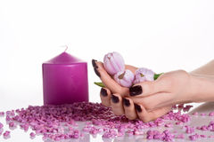 Cupped hands with dark manicure and tulips Royalty Free Stock Photography