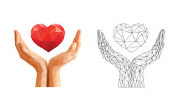 Cupped hands hold the floating heart and skeleton Stock Photos