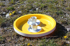 Cups of coffee on the grass Royalty Free Stock Photography