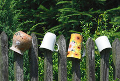 Cups on fence Stock Image