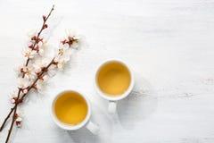 cups grön tea två Fotografering för Bildbyråer