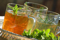Cups of herbal tea. Herbal tea with fresh rosemary, mint ,thyme Stock Photo